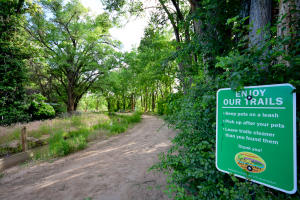 8850 Guadalupe Trail NW, Los Ranchos, NM 87114