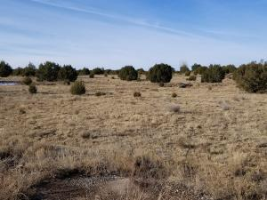 8B Paradise Road, Edgewood, NM 87015