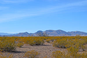 Lot 3-13 Highland Springs Ranch Road, San Antonio, NM 87832