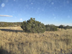 Lot 9 Block 1 Woodland Hills, Edgewood, NM 87015