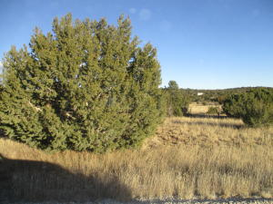Lot 32 Blk 1 Woodland Hills, Edgewood, NM 87015