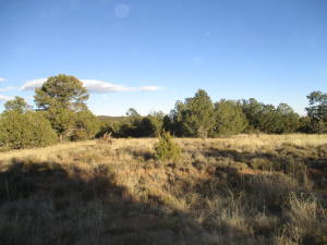 Lot 3, Block 2 Woodland Hills, Edgewood, NM 87015