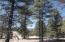 Lots 15-16 Black Bear, Ramah, NM 87321