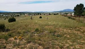 East Trail Trail, Edgewood, NM 87015