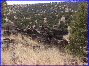 51 Cowboy Pass, Quemado, NM 87829
