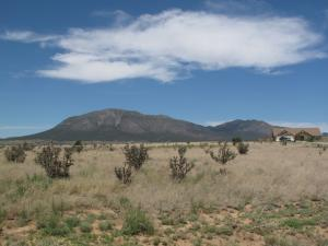 66 NORTHLAND MEADOWS Drive, Edgewood, NM 87015