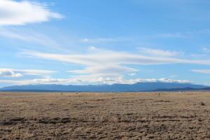 41 CROSS RANCH Road, Stanley, NM 87056