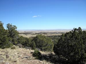 14 Sabrina Road tract 10, Edgewood, NM 87015