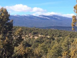 88 SEDILLO CANYON Road, Tijeras, NM 87059