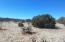 77 Joe Mae Road, Edgewood, NM 87015