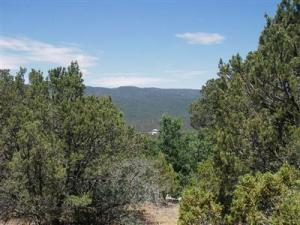 Lots 4 & 5 El Gallo Road, Cedar Crest, NM 87008