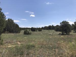 E Mustang, Ramah, NM 87321