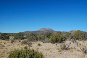175 Cow Mill Road, Edgewood, NM 87015