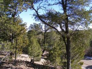 36 CANONCITO VISTA Road, Tijeras, NM 87059