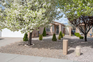 309 VIA VISTA Street SE, Albuquerque, NM 87123