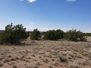 1200 Blue Hole Road, Santa Rosa, NM 88435