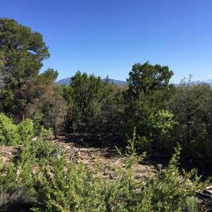 15 Las Nietas Ct, Edgewood, NM 87015