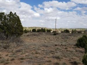 60 I 40 Frontage Road, Santa Rosa, NM 88435