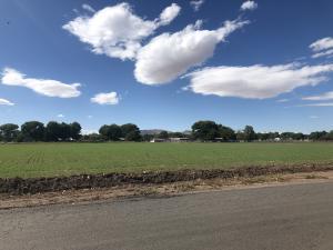 Edeal Road, Los Lunas, NM 87031
