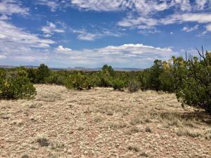 44 Camino del Sueno, Magdalena, NM 87825