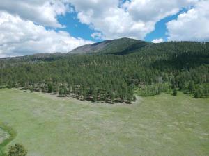 Amber Way, Jemez Springs, NM 87025