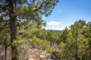0 Twisted Pine Road, Tijeras, NM 87059