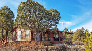 36 Dove Valley, Pie Town, NM 87827