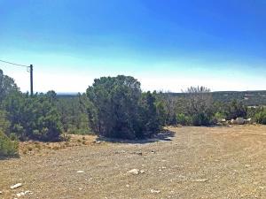 47 Duke Road, Edgewood, NM 87015