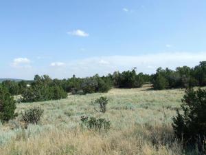 Wildlife Trail, Edgewood, NM 87015