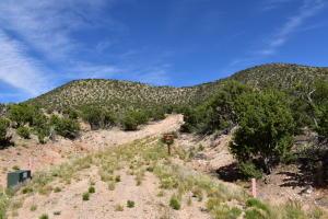 39 JUH Trail, Mountainair, NM 87036