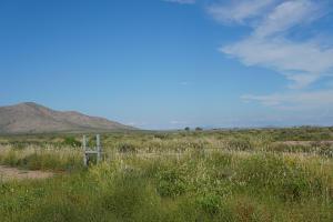 Track 5 El bordo Road SW, Deming, NM 88030