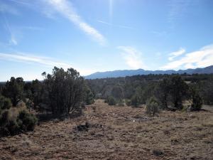 1 & 2 Camino Del Las Palas (A009), Torreon, NM 87061