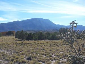 36 Palomino Loop, Placitas, NM 87043