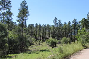 4th of July Road, Tajique, NM 87016