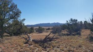 977 Greens Gap Road, Datil, NM 87821