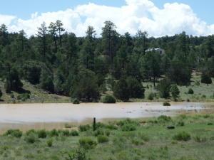 Hunting Retreat, Grants, NM 87020
