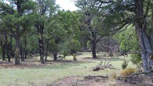 lot 6,7 Wilderness Circle, Datil, NM 87821