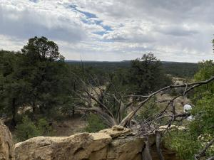 Lots 10-11 Old Well Road, Ramah, NM 87321