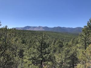 Lot 7 St Hwy 131, Manzano, NM 87016