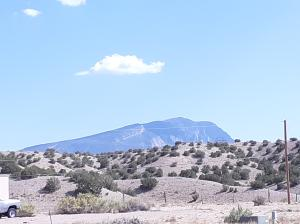 Looking SE from Property
