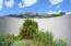 Sandia Mountain VIEWS...