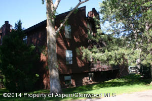 1300 Mount Sopris Drive, Unit 4a, Glenwood Springs, CO 81601