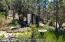 Have a garden and enjoy low maintenance landscaping