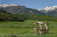 Unobstructed Snowmass Ski Area views and then some
