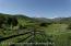 Ridges and valleys, scrubs and aspen