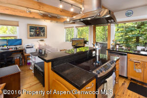 550 S Riverside Avenue, Unit 4, Aspen, CO 81611