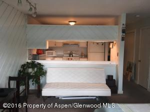 1329 Pitkin Avenue, #21, Glenwood Springs, CO 81601