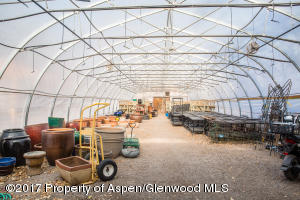 Interior photo of greenhouse