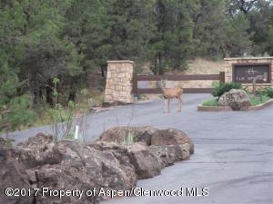 573 Wood Nymph Lane, Glenwood Springs, CO 81601