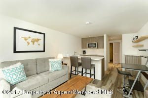 119 E Cooper Avenue, Unit 27, Aspen, CO 81611
